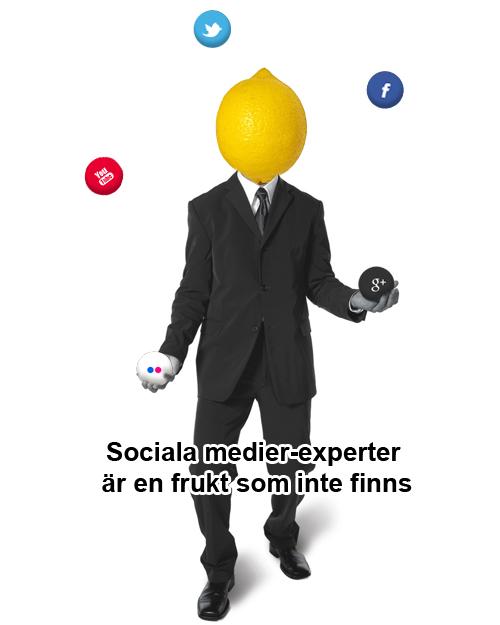 Sociala medier-experter